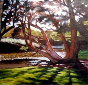 Stephen Kaldor - Centennial Park (NSW)